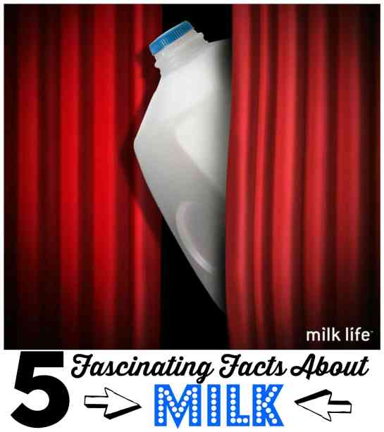5 Fascinating Facts about Milk #milkdrive #ad