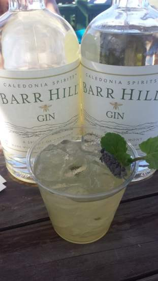 Mint Juleps with Gin at Polo on the Lawn
