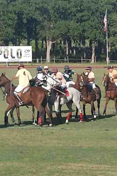 The Perfect Day at Polo On the Lawn