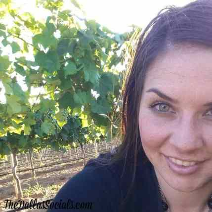 Delaney Vineyards  - Grapevine Wine Tours