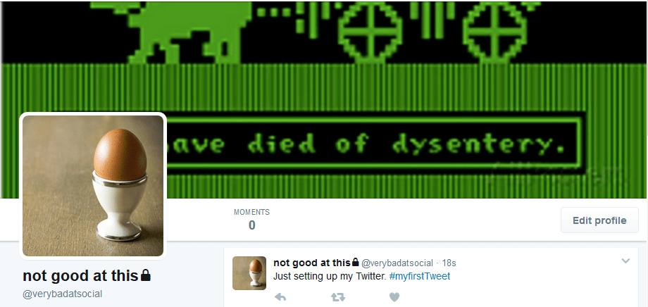 """Twitter profile header is a screenshot from Oregon Trail saying """"you have died of dysentery"""" but the wording is obscured by the placement of the Twitter profile picture, which is an egg"""