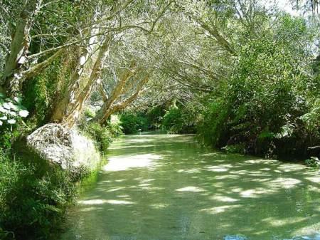 Eli Creek Fraser Island