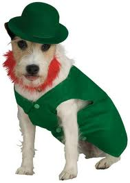 dog leprechaun