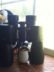 NinjaRP Binoculars