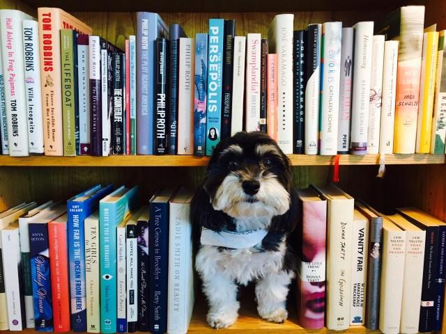 tucker-and-books