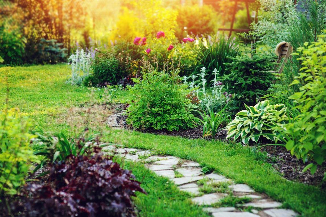 Create A Beautiful Backyard Garden Design The Dedicated House