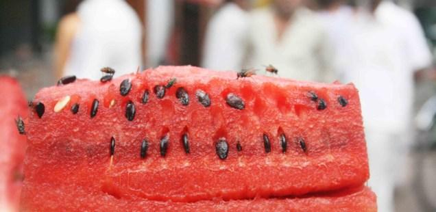 Atget's Corner – 116-120, Delhi Photos