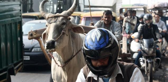 Atget's Corner – 771-775, Delhi Photos