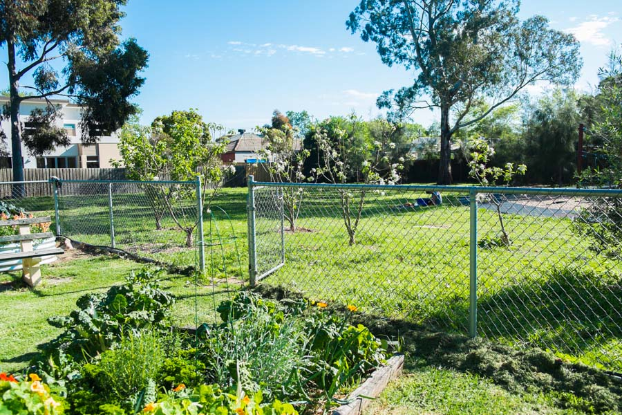 Flemington Forest Garden Design The Desert Echo