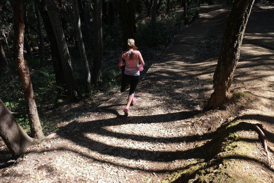 huddart-county-park-ultrarunning-50km (25)
