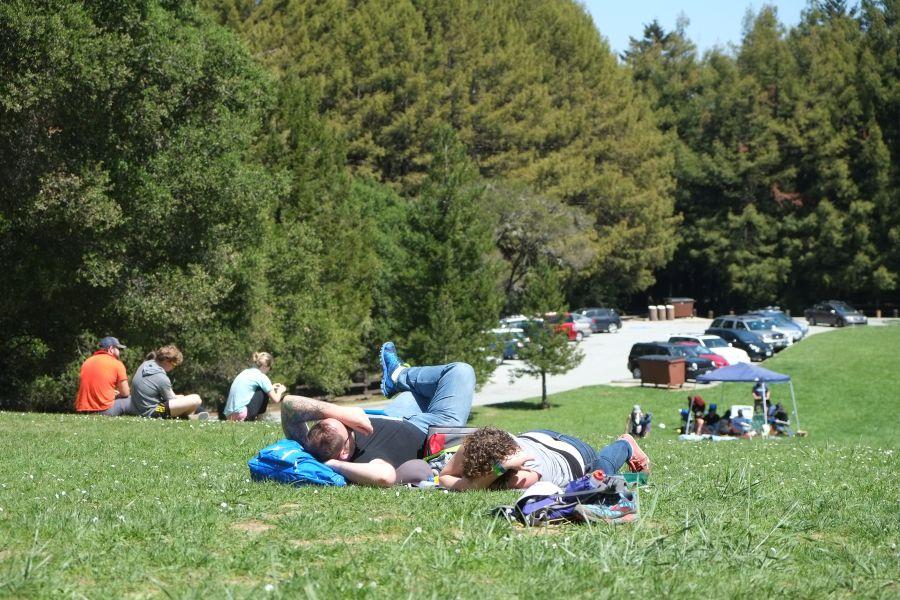 huddart-county-park-ultrarunning-50km (39)