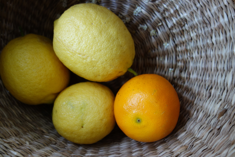 Lemons contain citric acid (preservative) and ascorbic acid (vitamin C)