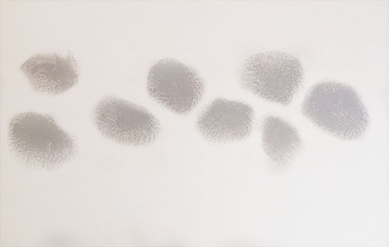 Apply First Circles for DIY Faux Watercolor Wallpaper Wall Treatment with Paint