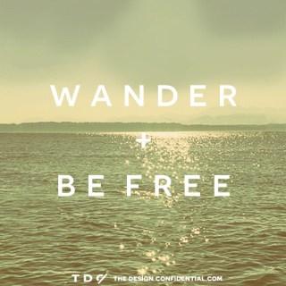 wander1tdc-2.jpg