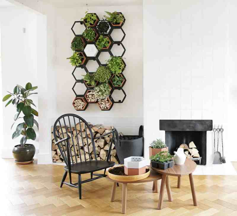 Chalk & Moss Horticus indoor Living Wall Kits
