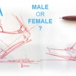 Male or female design ? |TIP83