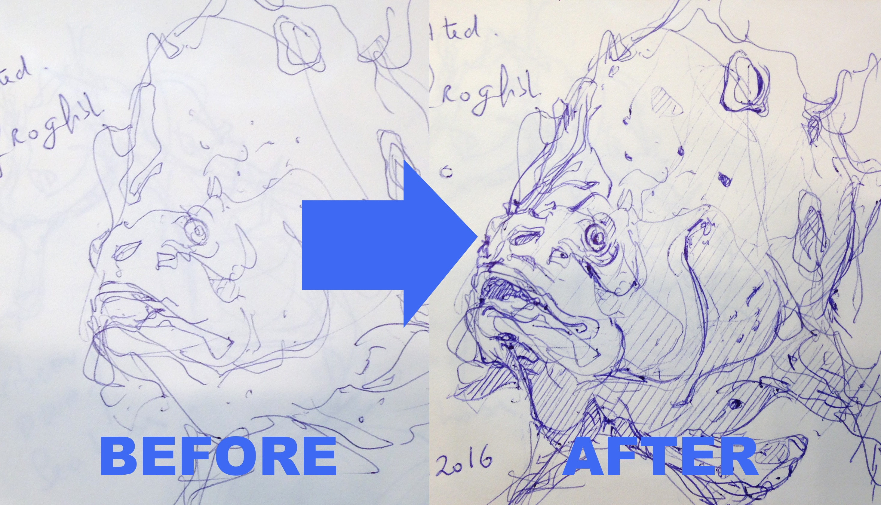 before after the design sketchbook sketch boston acquarium fish drawing ball point pen blue bic copy