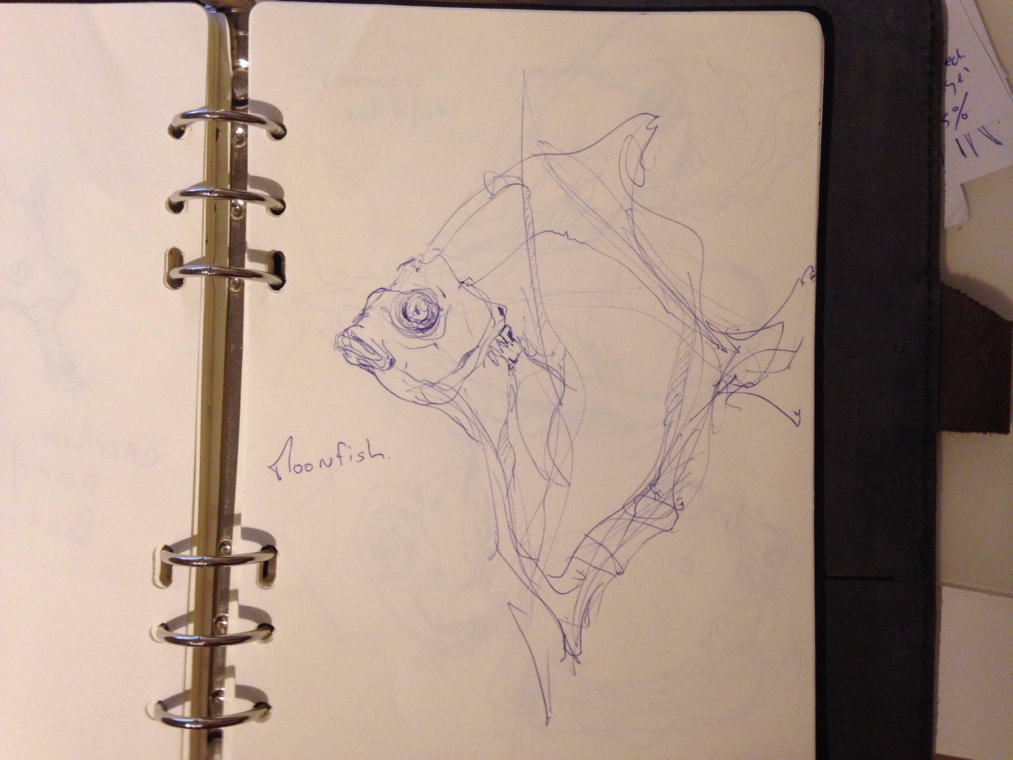 the design sketchbook sketch boston acquarium fish drawing ball point pen blue bic Moonfish