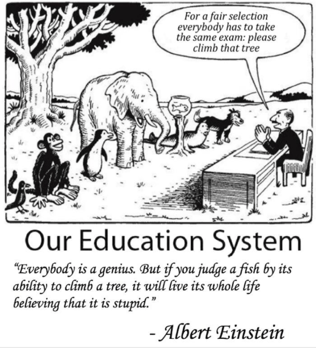 our education system asking a fish climbing a tree Albert Einstein
