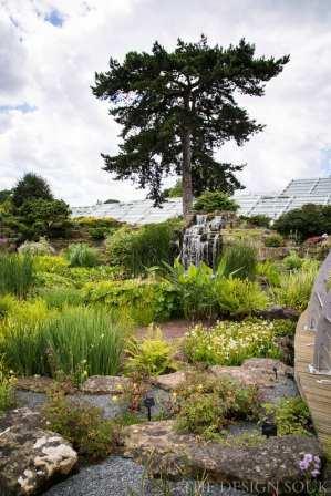 The Design Souk - Rock Garden