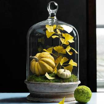 http://www.bhg.com/decorating/seasonal/fall/natural-fabulous-fall-decor/?slideId=7dfd8861-8c23-4e0f-a57d-132c3aa4ccd9#page=5