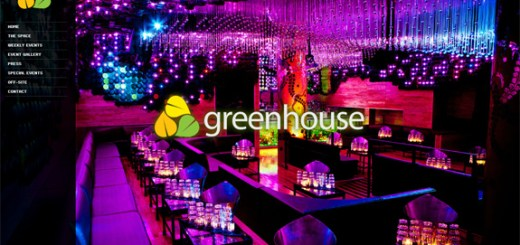 Night Club Website Designs