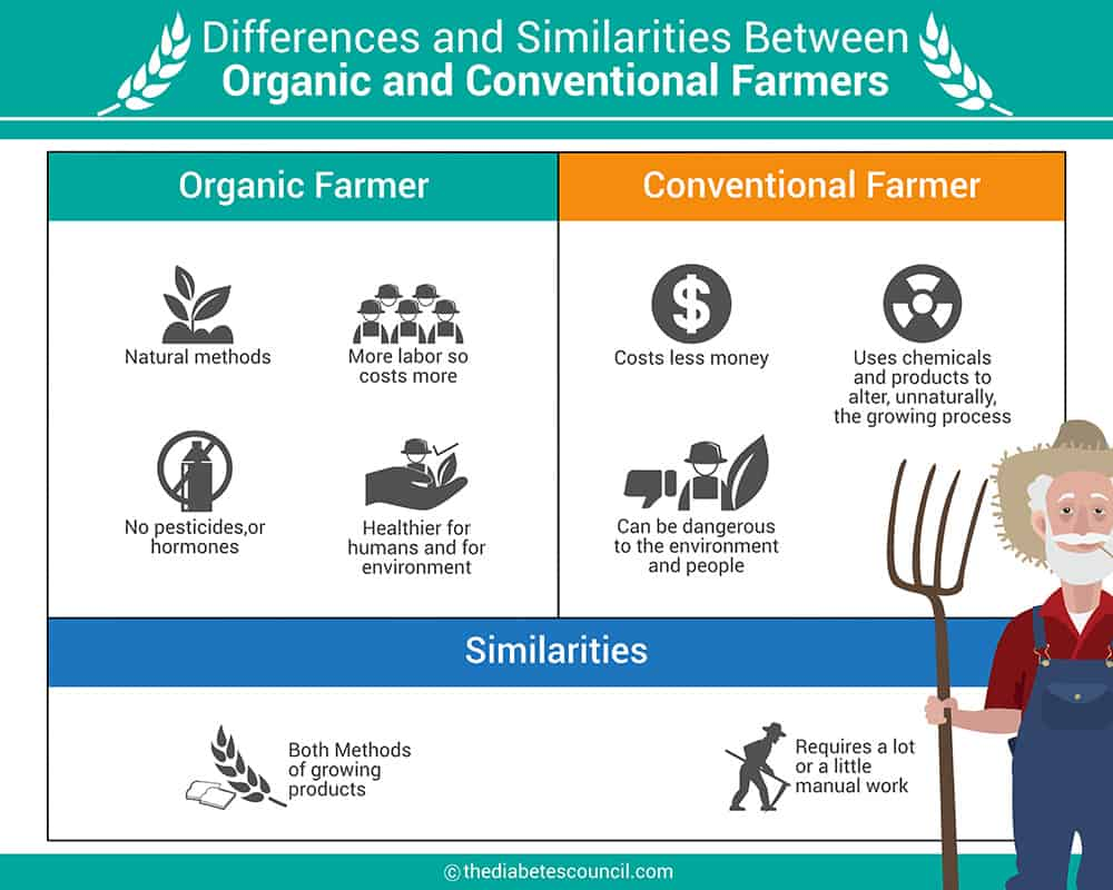 hight resolution of the difference between organic food and conventional food