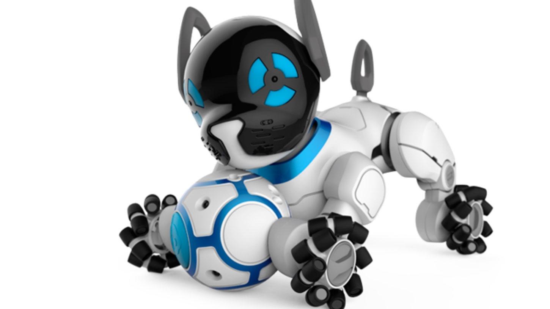 Chip il cane robot che punta a farci dimenticare Aibo  The Digeon