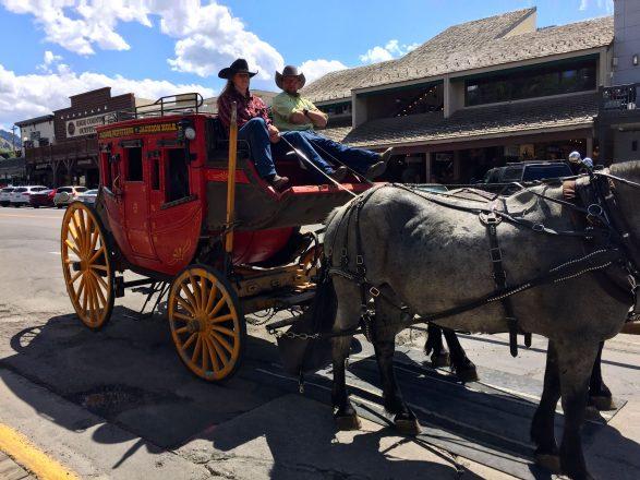 Jackson Horse Drawn Carriage Rides