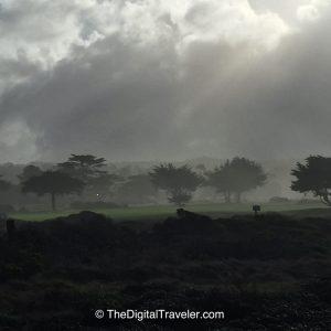 MPCC Golfcourse Fog