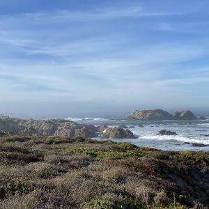 Seal Rock-Pebble Beach