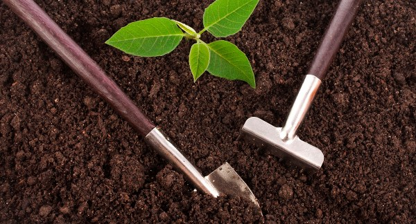 bagged garden soil west