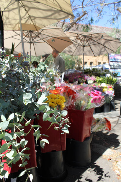 paddington-market-flower-stall