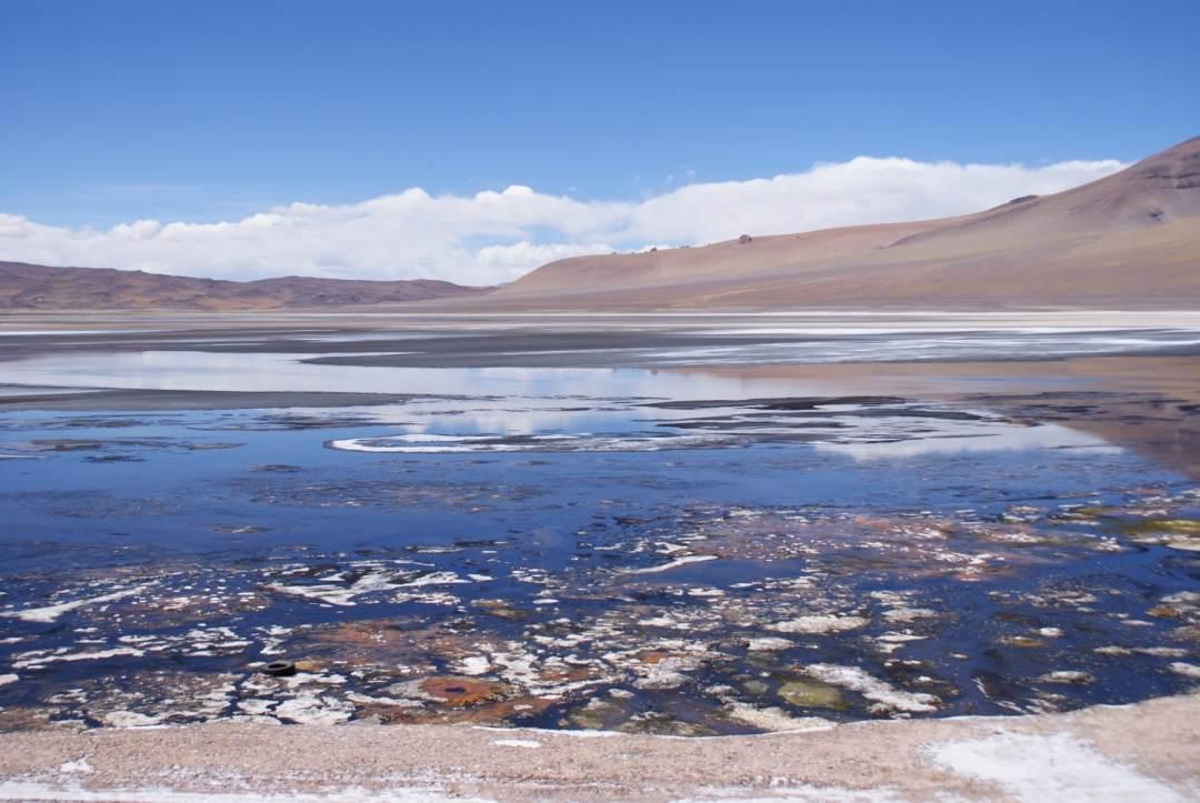 Salar de Tara, Atacama Desert