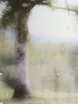 Tree Swing, mixed media image transfer on panel, 6 x 8 inches