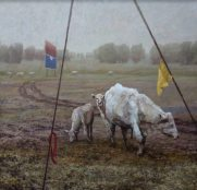 White Cows with Yellow Flag, oil on canvas, 48 x 50 inches