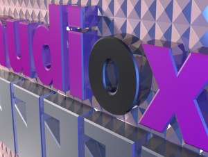 audiox logo smaller image from right