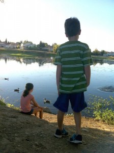 siblings and divorce