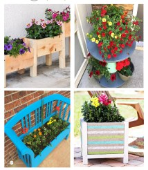 Inspirational Flowering Container Garden Projects