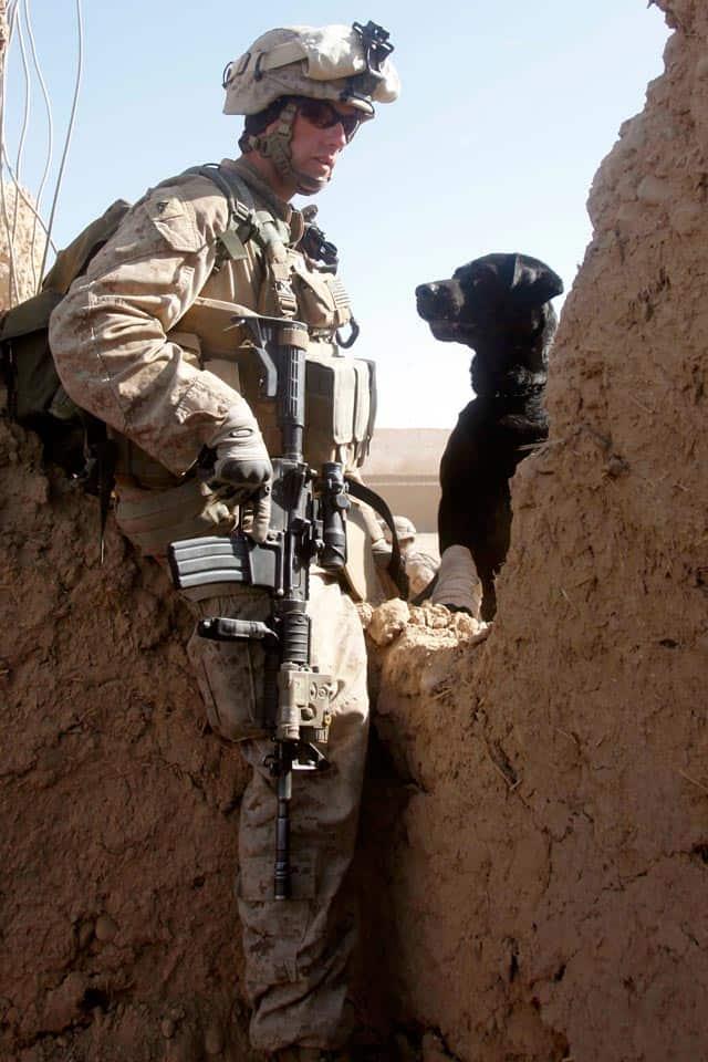 Marine On Patrol With Dog