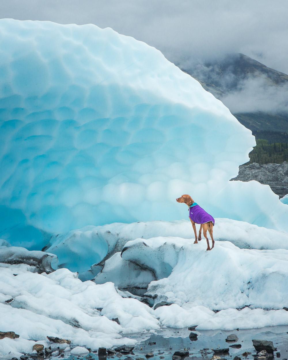 Summer glacier hikes in Alaska