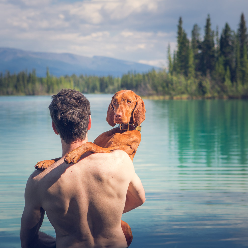 Boya Lake Provincial Park, hold me daddy, man's best friend, vizsla