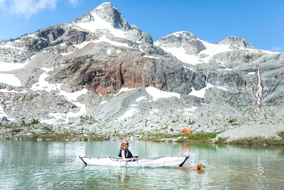 Dog swimming next to woman on alpine lake in British Columbia
