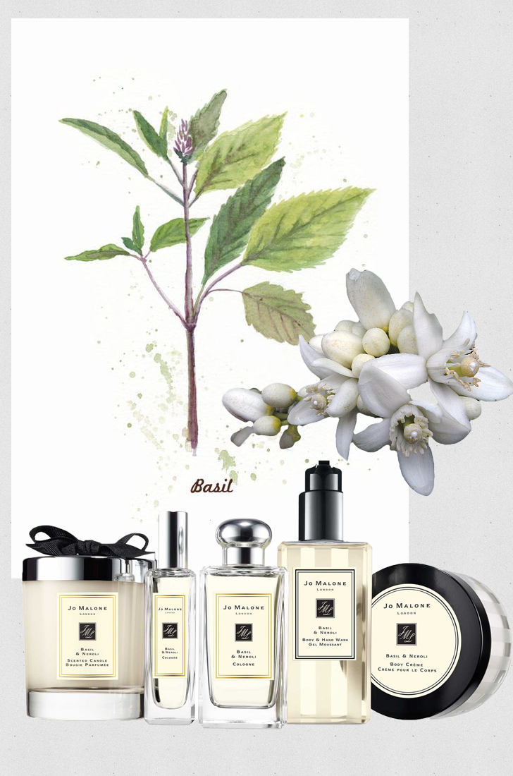 fall fragrances jo malone basil neroli body lotion candle
