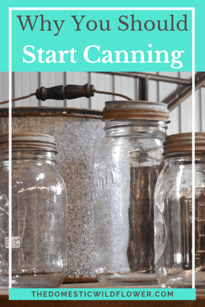 Why You Should Start Canning