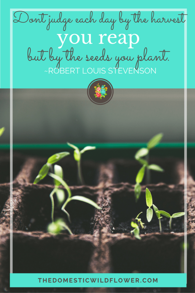 Don't judge each day by the harvest you reap but by the seeds you plant | 19 Inspirational Quotes for Country Girls | The Domestic Wildflower click through to read this awesome post! These encouraging and inspirational quotes explain what it means to have the heart of a country girl.