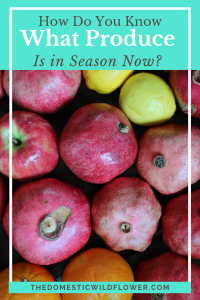 What Produce Is In Season Now?