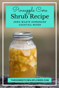 5 Easy Shrub Recipes