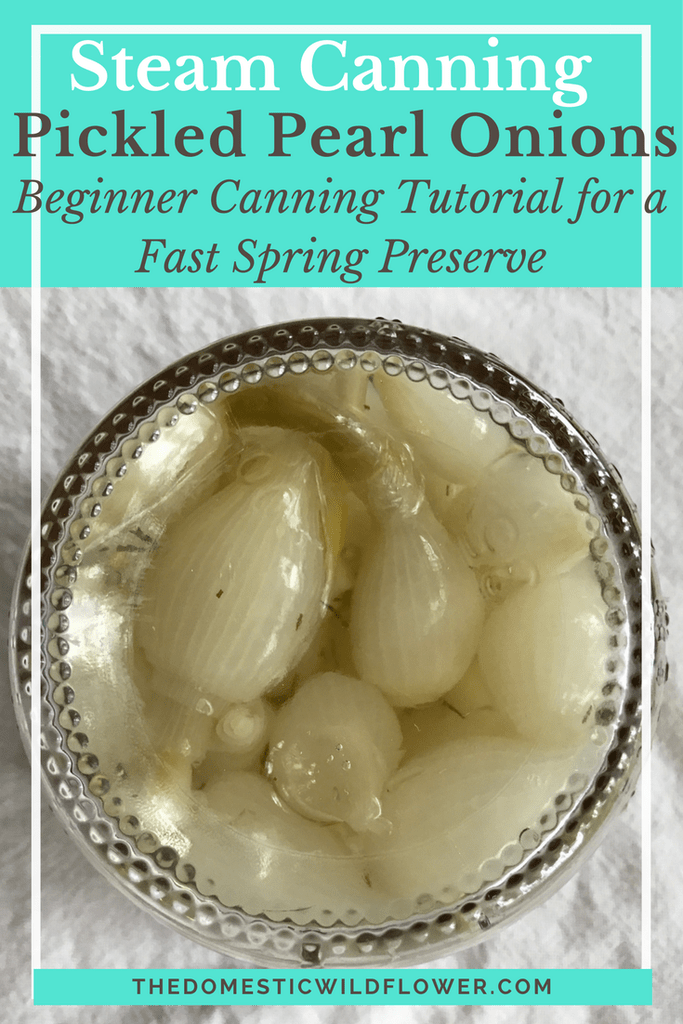 3 Easy Pickle Canning Recipes for Beginners