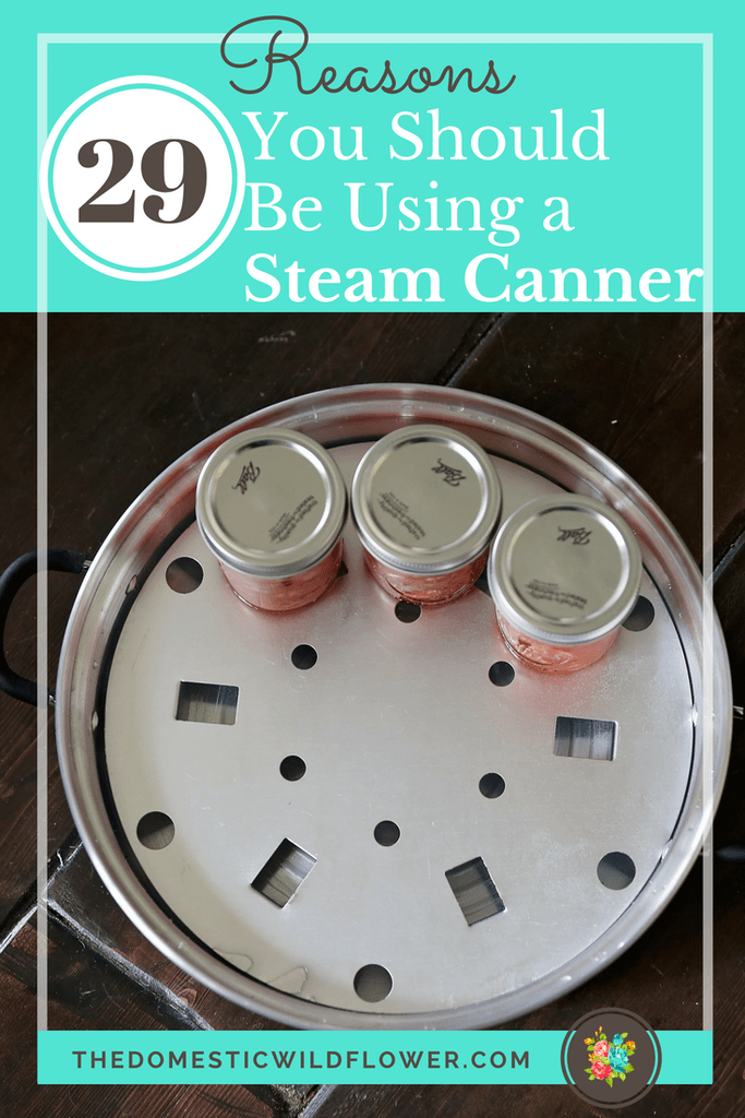 6 Steam Canning Resources